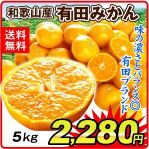 みかん 和歌山産 有田みかん 5kg 柑橘 食品 国華園 seikaokoku