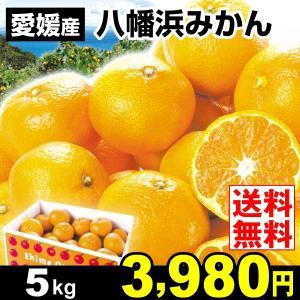 みかん 愛媛産 八幡浜みかん 5kg 柑橘 食品 seikaokoku