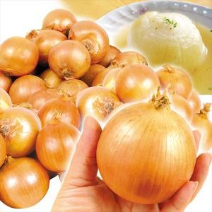 たまねぎ 淡路島産 小玉たまねぎ 10kg 1箱 送料無料 食品 国華園|seikaokoku