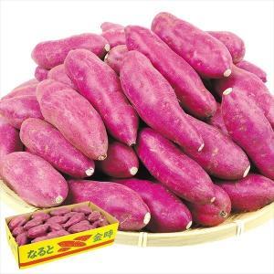 さつまいも 徳島産 なると金時 5kg サツマイモ 薩摩芋 野菜|seikaokoku