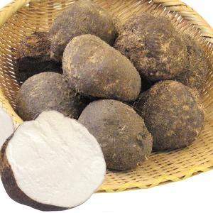 やまいも 石川産他 山の芋 10kg 野菜 食品 グルメ 国華園|seikaokoku