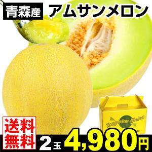 メロン 青森産 アムさんメロン 2玉 ご家庭用 メロン 果物 食品|seikaokoku