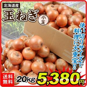 たまねぎ 北海道産 小玉たまねぎ 20kg 玉ねぎ 野菜 玉葱 タマネギ 食品 グルメ 国華園|seikaokoku