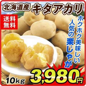 じゃがいも 北海道産 キタアカリ 10kg ジャガイモ じゃが芋 野菜|seikaokoku