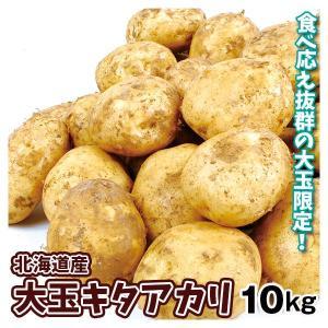じゃがいも 青森産 ちびキタアカリ (小玉) 10kg ジャガイモ じゃが芋 野菜|seikaokoku