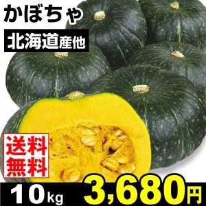 カボチャ 北海道産他 かぼちゃ 10kg 野菜 食品 グルメ|seikaokoku