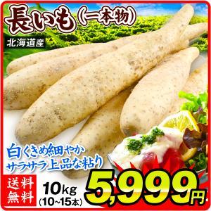 長イモ 北海道産 長いも (一本物) 10kg 長芋 野菜 食品 グルメ 国華園|seikaokoku
