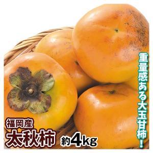 大特価 家庭用太秋柿 4kg 1組 seikaokoku