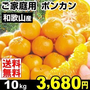 みかん 和歌山産 ご家庭用 ポンカン 10kg 柑橘 食品 seikaokoku