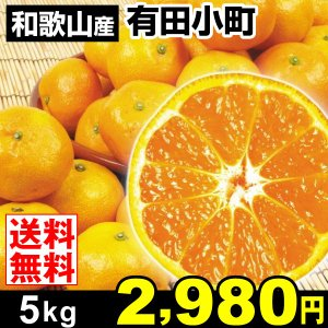 みかん 和歌山産 有田小町 5kg 柑橘 食品 seikaokoku
