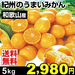 みかん 和歌山産 紀州のうまいみかん 5kg 柑橘 食品 seikaokoku