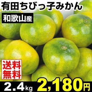 みかん 和歌山産 有田ちびっ子みかん 極早生 2.4kg 柑橘 食品 seikaokoku
