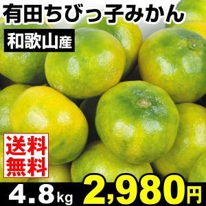 みかん 和歌山産 有田ちびっ子みかん 極早生 4.8kg 柑橘 食品 seikaokoku