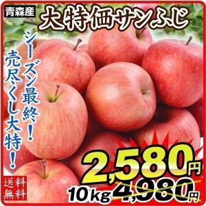 りんご 青森産 ご家庭用 サンふじ(10kg)24〜56玉 林檎 フルーツ 国華園|seikaokoku