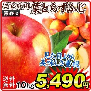 りんご 青森産 ご家庭用 葉とらずふじ 10kg 1箱 送料無料 食品 国華園|seikaokoku