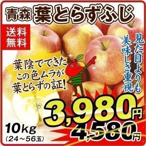 りんご 青森産 ご家庭用 葉とらずふじ(10kg)26〜50玉 林檎 フルーツ 国華園|seikaokoku