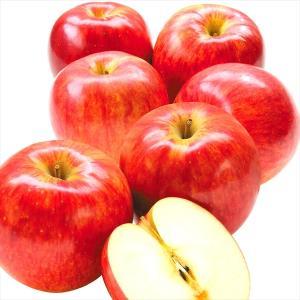 りんご 青森産 ご家庭用 サンつがる 5kg 林檎 果物 seikaokoku