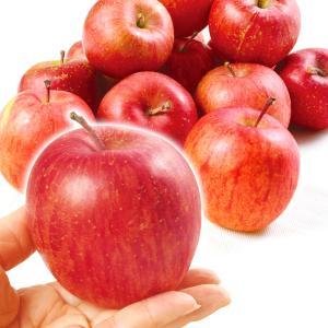 りんご 青森産 ちびふじ(10kg)50〜60玉 小玉 手乗りサイズ バラ詰 林檎 フルーツ 国華園|seikaokoku