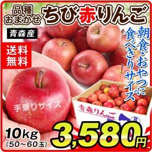 りんご 青森産 おまかせ ちび赤りんご(10kg)新物 林檎 食べきりサイズ 品種おまかせ 果物 フルーツ 果物 国華園|seikaokoku