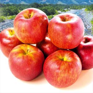 りんご 長野産 シナノスイート 5kg 林檎 果物 国華園|seikaokoku