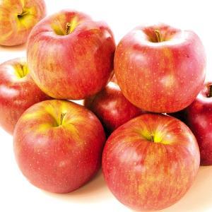 りんご 長野産 シナノスイート 10kg 林檎 果物 国華園|seikaokoku