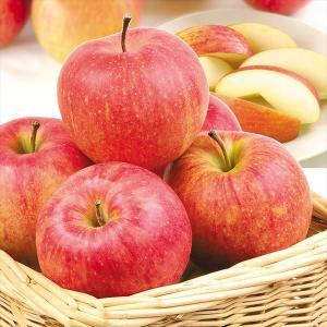 りんご 山形産 ふじ・サンふじ(10kg)24〜54玉 ご家庭用 ふじ サンふじ 林檎 フルーツ 果物 国華園|seikaokoku