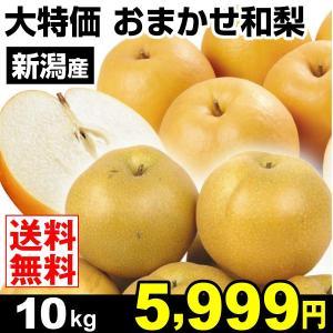 梨 大特価 新潟産 おまかせ和梨 10kg なし 食品 国華園|seikaokoku