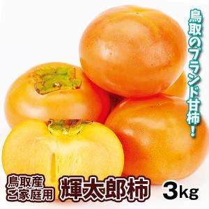 柿 かき 鳥取産 ご家庭用 輝太郎 3kg 果物 食品 国華園 seikaokoku