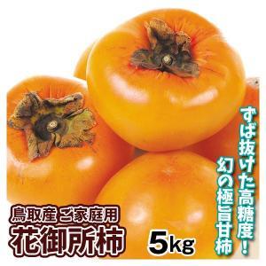 柿 かき 鳥取産 花御所柿 5kg ご家庭用 果物 食品 国華園|seikaokoku