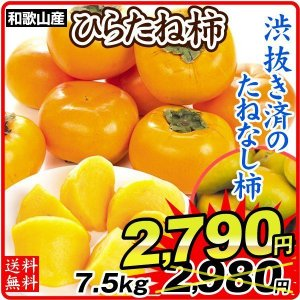 柿 かき 和歌山産 ご家庭用 ひらたね柿 7.5kg 果物 食品 国華園|seikaokoku