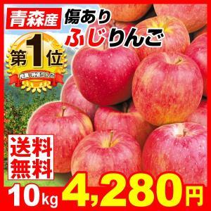 りんご ふじ 10kg 青森県産 ふじ ご家庭用 訳あり 林檎 ふじりんご ふじ 現在出荷中 果物 seikaokoku