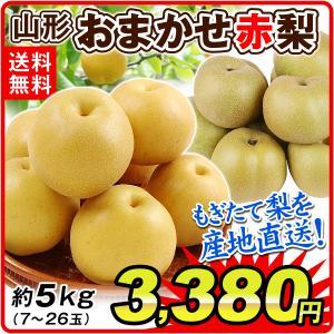 梨 山形産 おまかせ赤梨(約5kg)7〜26玉 ご家庭用 なし 和梨 赤梨 品種おまかせ  豊水 幸水 南水 秋月など フルーツ 果物 食品 国華園|seikaokoku