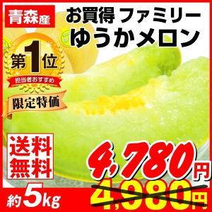 メロン 約5kg 青森県産 お買得 ファミリー ゆうかメロン 青肉メロン 希少 冷蔵便 果物  数量限定|seikaokoku