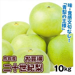 梨 鳥取産 お買得 二十世紀梨(10kg)16〜36玉 青梨の王様 にじゅっせいき なし 和梨 果物 フルーツ 国華園|seikaokoku