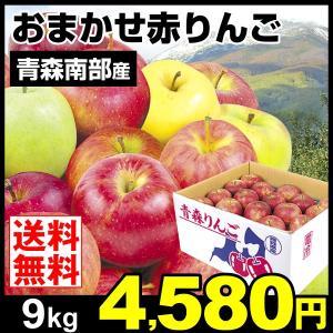 りんご  青森・南部産 赤りんご(9kg)品種おまかせ 林檎 ご家庭用 フルーツ 果物 国華園 seikaokoku