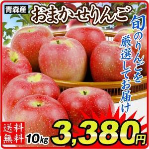 りんご 青森産 徳用 おまかせりんご(10kg)1箱 ご家庭用(赤りんご or 青りんごからお選びください) 数量限定 品種おまかせ 国華園|seikaokoku