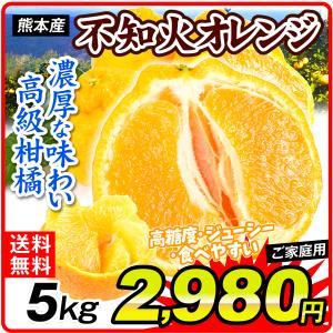 みかん 熊本産 ご家庭用 不知火オレンジ 5kg 1箱 送料無料 食品 国華園|seikaokoku