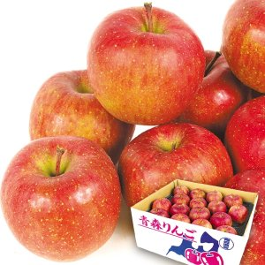 りんご 青森産 サンふじ 10kg1箱 フルーツ 果物 林檎 国華園 seikaokoku