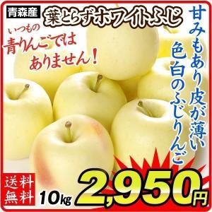 りんご 青森産 ホワイトふじ  5kg1箱 フルーツ 果物 林檎 国華園 seikaokoku