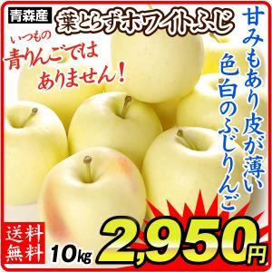 りんご 青森産 ホワイトふじ  10kg1箱 フルーツ 果物 林檎 国華園 seikaokoku