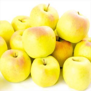 りんご 青森産 もりのかがやき 10kg1箱 フルーツ 果物 林檎 国華園 seikaokoku
