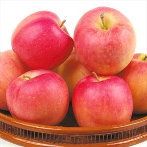 りんご 青森産 むつ 5kg1箱 フルーツ 果物 林檎 国華園 seikaokoku