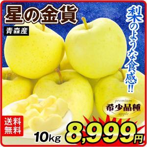 りんご 青森産 星の金貨 10kg1箱 フルーツ 果物 林檎 国華園 seikaokoku