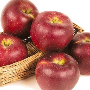 りんご 長野産 秋映 5kg1箱 フルーツ 果物 林檎 国華園 seikaokoku