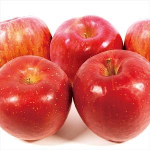 りんご 青森産 ひろさきふじ 10kg1箱 フルーツ 果物 林檎 国華園 seikaokoku