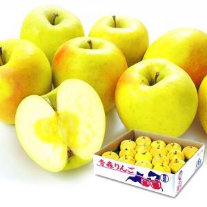 りんご 青森産 ぐんま名月 5kg1箱 フルーツ 果物 林檎 国華園 seikaokoku