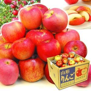 りんご 山形産 お楽しみ赤りんご 10kg1箱 フルーツ 果物 林檎 国華園 seikaokoku