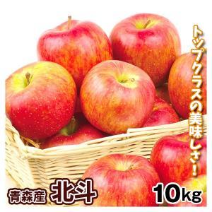 りんご 青森産 北斗(10kg)22〜46玉 ご家庭用 ほくと 希少品種 フルーツ 果物 林檎 国華園|seikaokoku