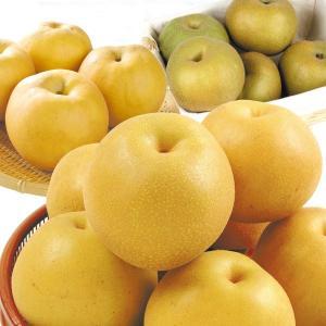梨 大特価 山形産 おまかせ和梨 4.5kg1箱 フルーツ 果物 国華園|seikaokoku