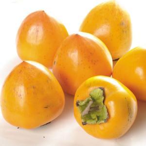 柿 奈良産 江戸柿 【脱渋済】 10kg1組(5kg×2箱) フルーツ 果物 国華園|seikaokoku